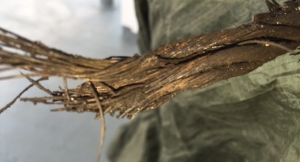 Figure No.9 A damaged wire rope